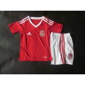 1er Maillot De Pays De Galles Coupe D'Europe 2016 - Enfant Soldes